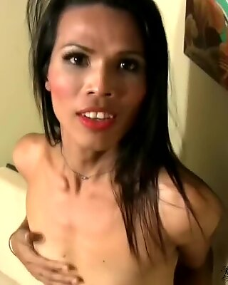 Horny ladyboy is sucking dick while stroking her own shecock
